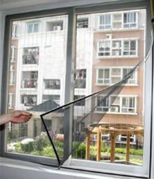 Magnetic insect screen for windows